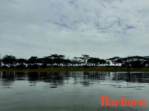safari-in-kenia-barbara_02