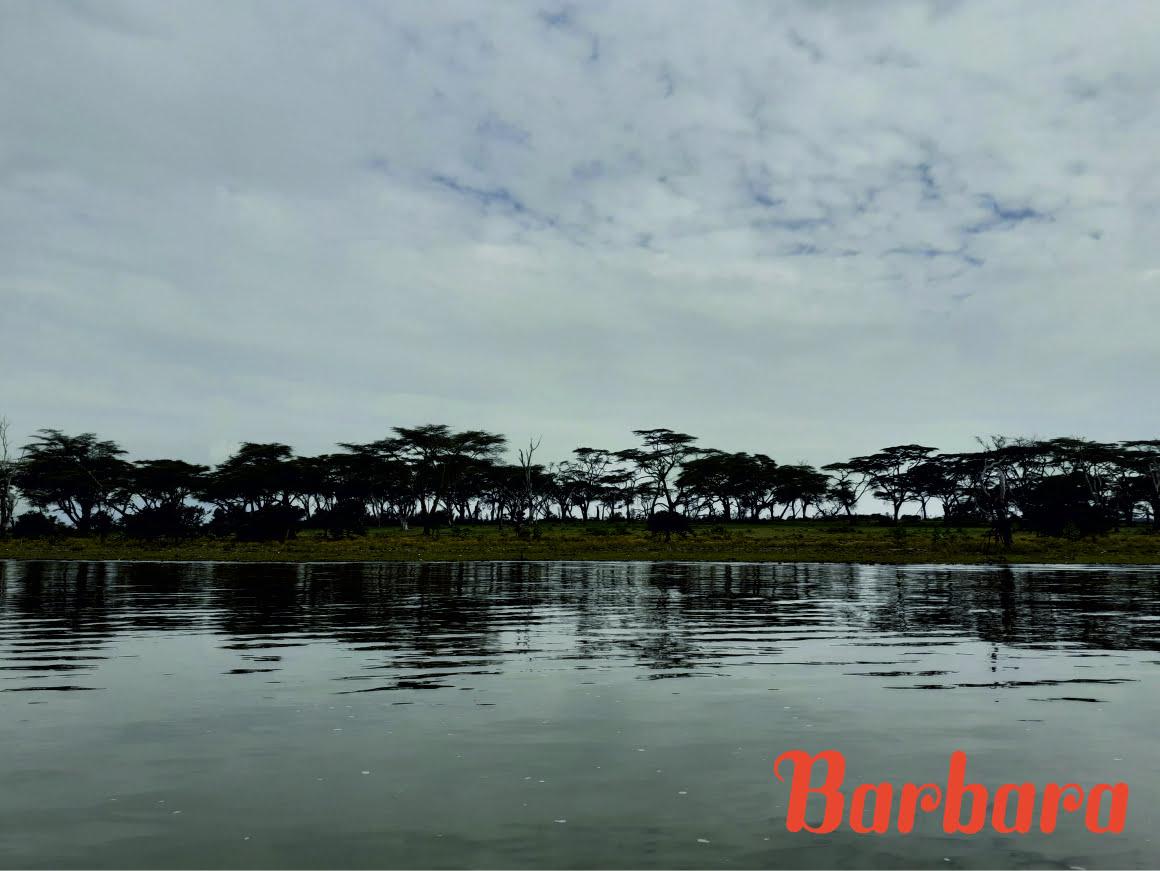 safari-in-kenia-barbara_02