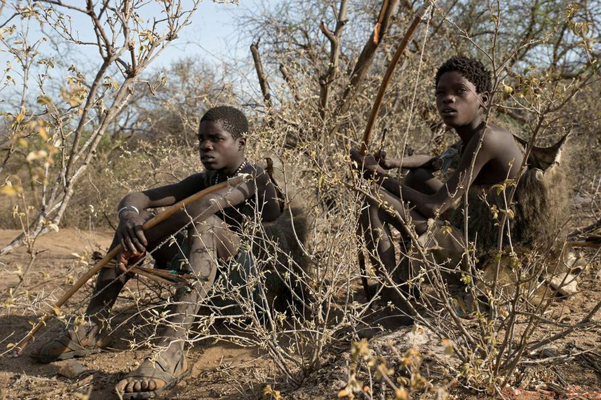 hadzabe-hunters