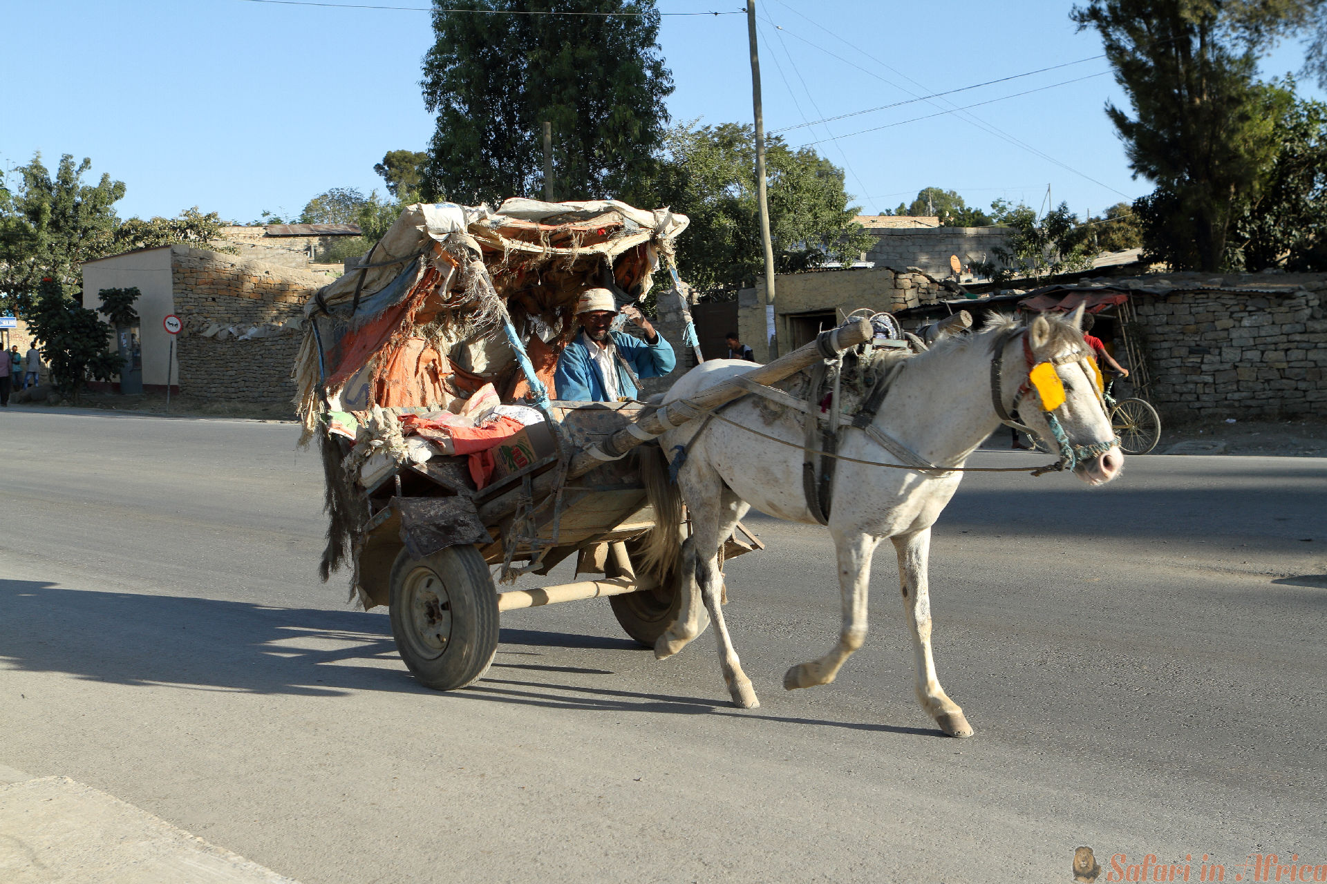 A Horse carriage in the streets of Mekele in Ethiopia