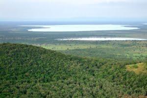 Aerial scenery of the Queen Elizabeth National Park in Uganda (Africa)