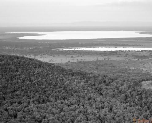 Luchtfoto landschap van het Queen Elizabeth National Park in B&W Oeganda (Afrika)
