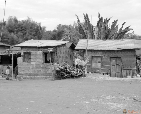 African houses at the Dorze village on the Guge mountains, Ethiopia B&W