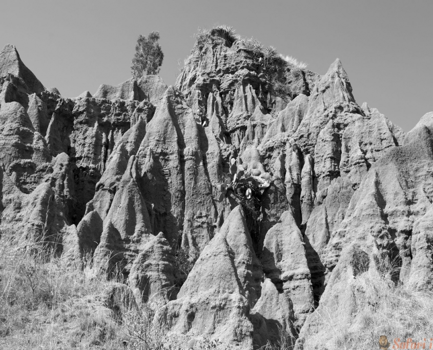 African landscape at the Konso area in the South of Ethiopia B&W