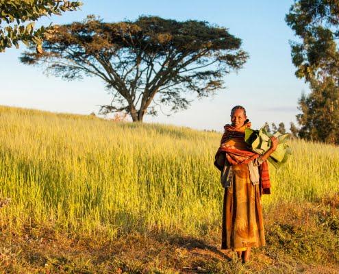 Ethiopian woman with banana leaves. Outdoors, clothing. Oromia