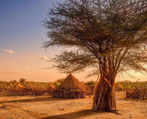 Hamer village near Turmi, Ethiopia 2