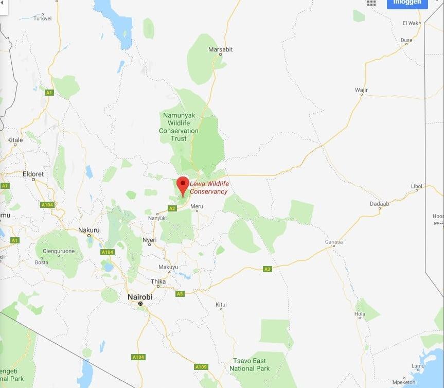 Kenia-Safari Lewa Wildlife Concervancy