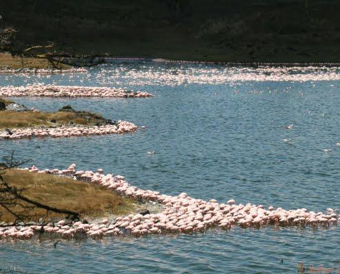 Momella Lakes, Arusha NP