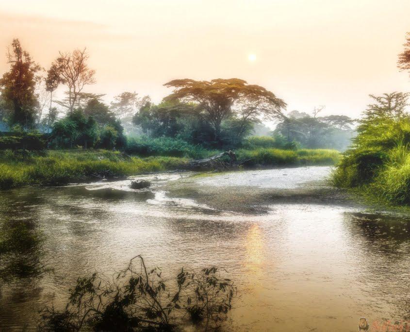 Ochtend op Ishasha River, Queen Elizabeth National Park in Oeganda