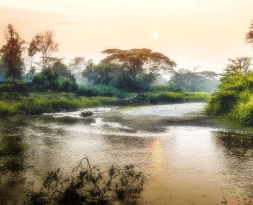 Morning on Ishasha River, Queen Elizabeth National Park in Uganda