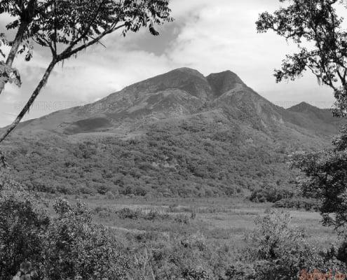 Mount Kahuzi B&W