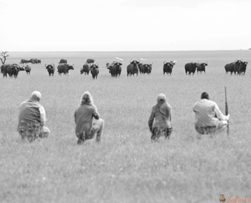 Ol Pejeta walking-safari-animals B&W