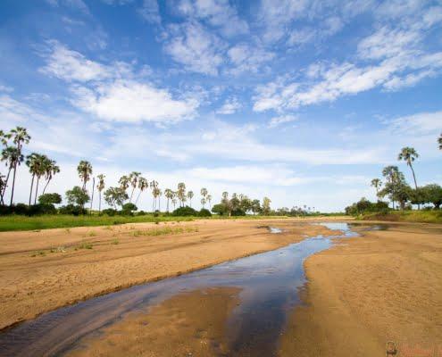 Riverbed Ruaha, Tanzania