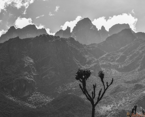 Zonsondergang bij Rwenzori-Bergen, Oeganda B&W