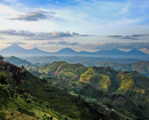 Virunga range viewed from Nkuringo, Uganda