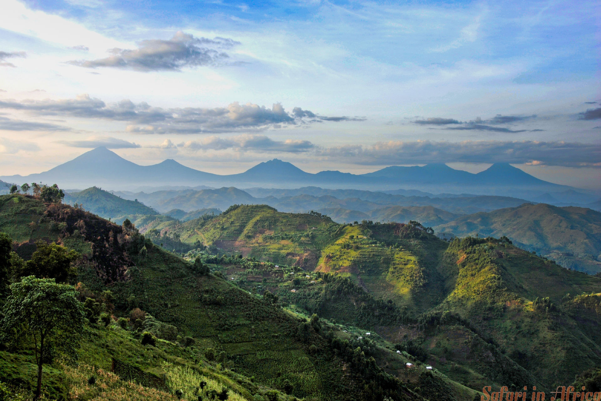 Virunga range viewed from Nkuringo, Uganda