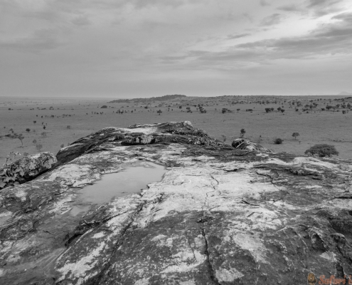 Wide Kidepo national park in Uganda B&W