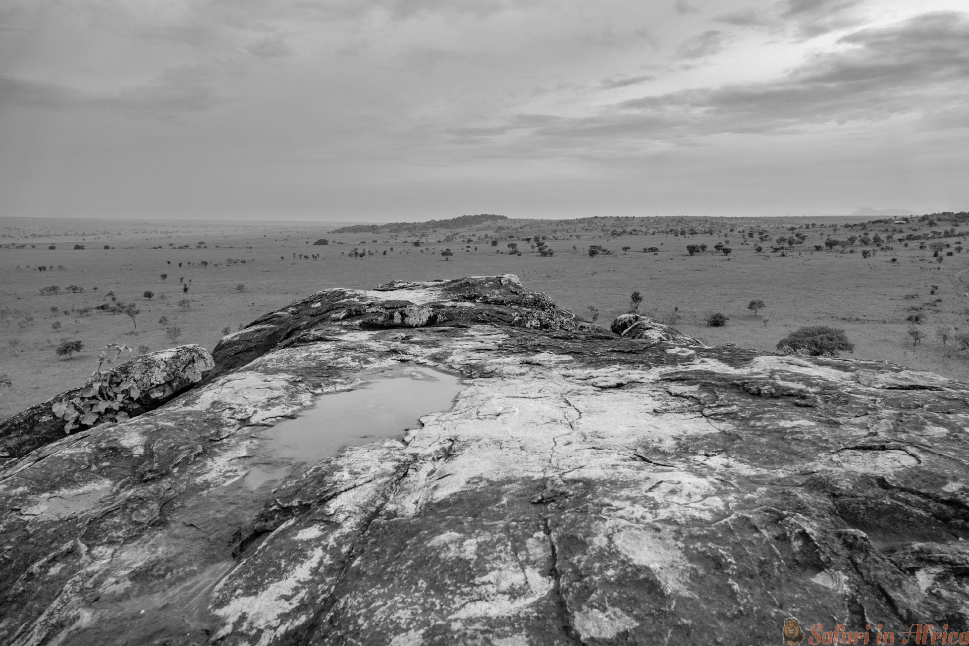 Wide Kidepo national park in Uganda B&W