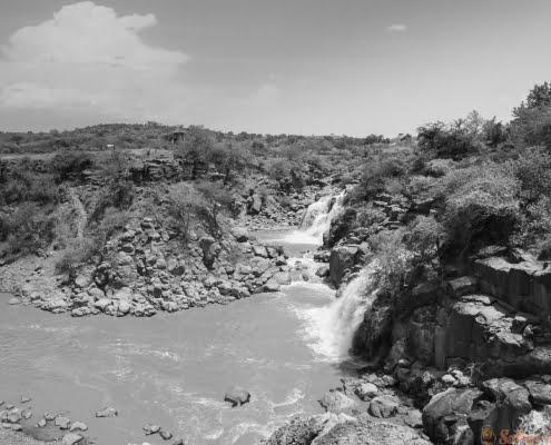 awash National Park B&W