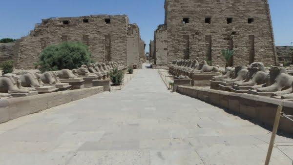 egypte-rondreis_safari-in-africa_luxor-tempel_14