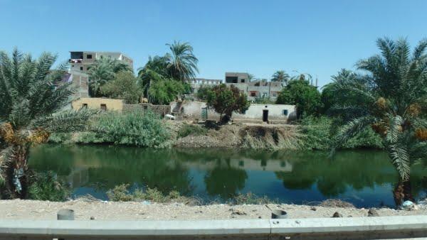 egypte-rondreis_safari-in-africa_nijl_06