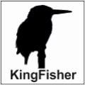 safari-in-kenia-kingfisher