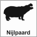 safari-in-kenia-nijlpaard