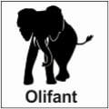 safari-in-kenia-olifant