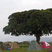 safai-in-tanzania-simba-campsite-ngorongoro_03