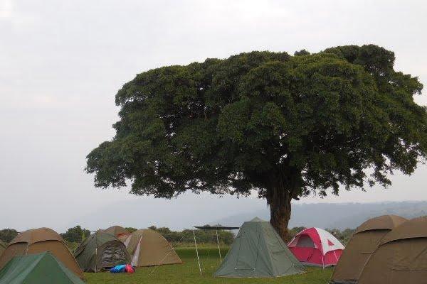 Simba Campsite @Ngorongoro- Tanzania