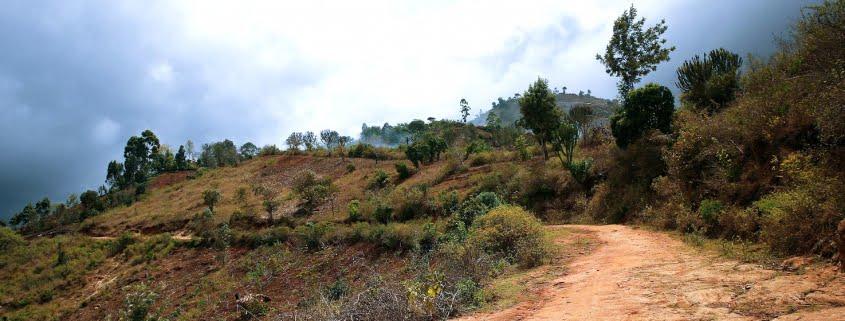 safari-in-africa-usambara-mountains_05