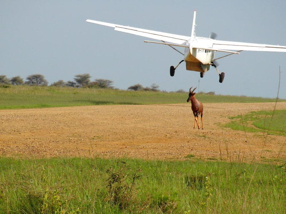 safari-in-afrika-airstrip_01