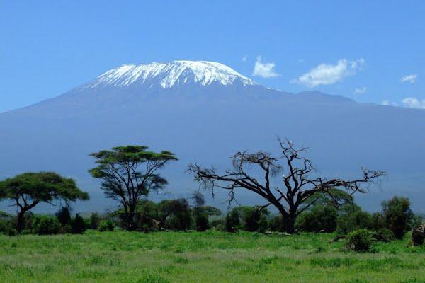 safari-in-afrika_kilimanjaro_01