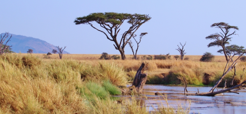 safari-in-afrika_tanzania-landschap_01