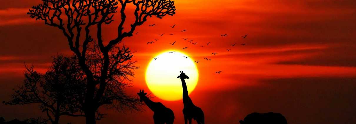 safari-in-afrika_zonsondergang_02