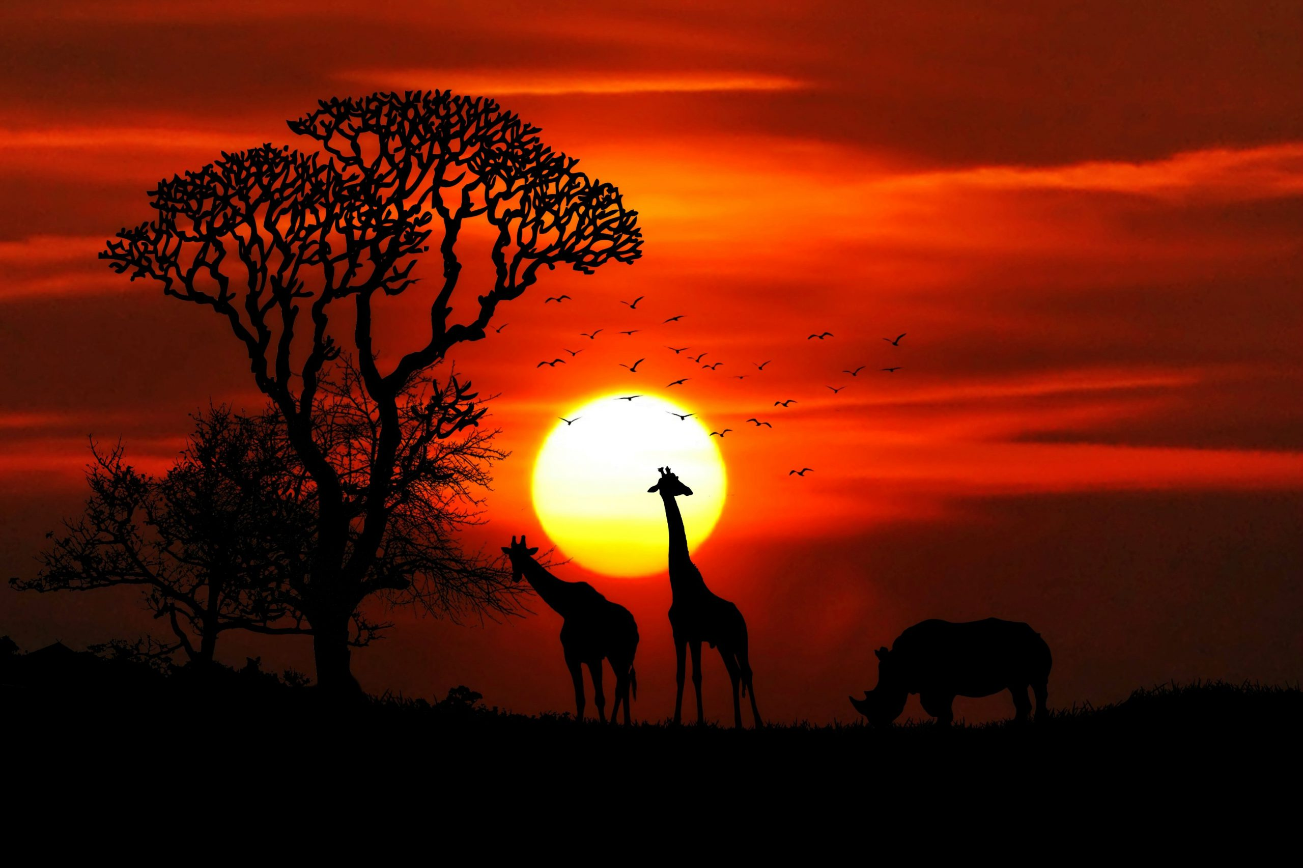 safari-in-afrika_zonsondergang_02