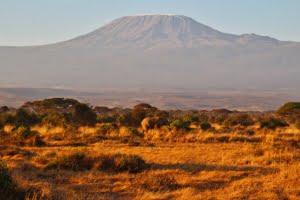 safari-in-kenia-amboseli-national-park-14
