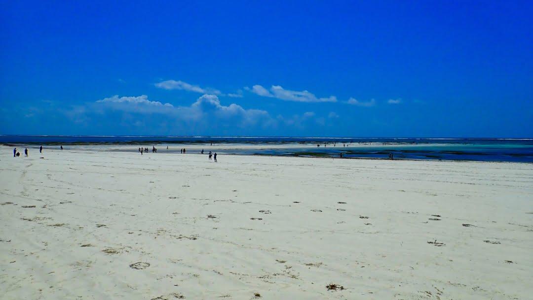 safari-in-kenia-diani-beach-03