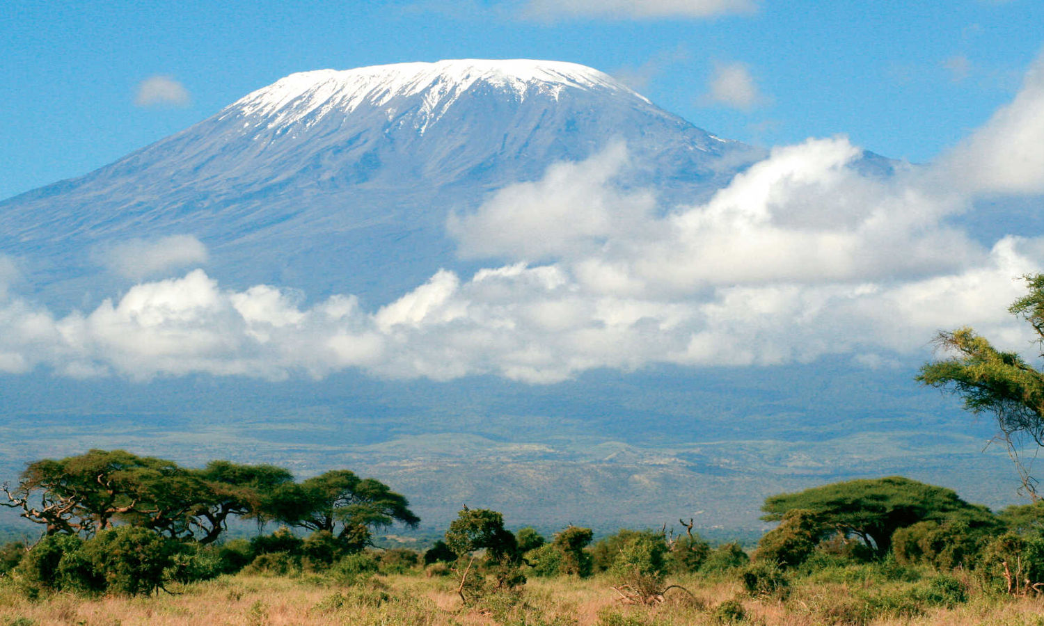 safari-in-kenia-kilimanjaro