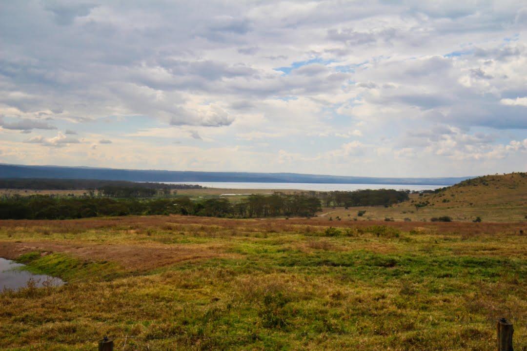 safari-in-kenia-lake-nakuru-01