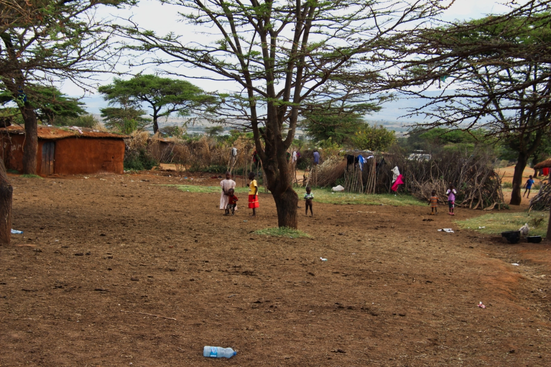 safari-in-kenia-masai-mara-game-reserve-23