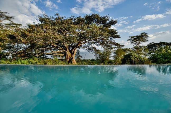 safari-in-kenia_loldia-house_07