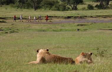 safari-in-kenia_masai-mara_03