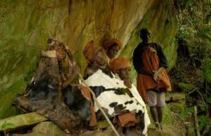 safari-in-oeganda-batwa-pygmy-tribe_01