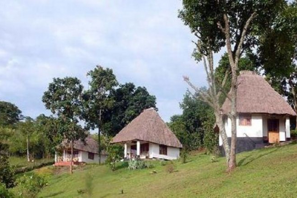 Chimpanzee Forest Guesthouse @Kibale National Park – Oeganda