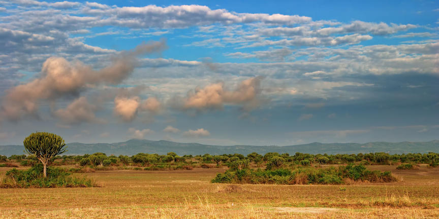 safari-in-oeganda-queen-elizabeth-national-park_04