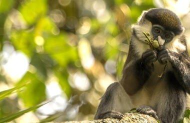 safari-in-oeganda-queen-elizabeth-national-park_09