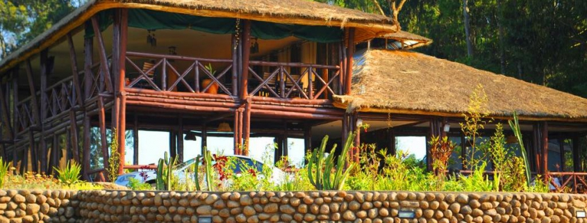 safari-in-rwanda-da-vinci-gorilla-lodge-kinigi_01