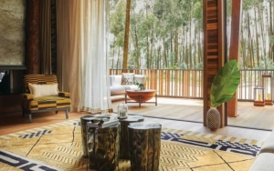 safari-in-rwanda-one-and-only-gorillas-nest-hotel_03
