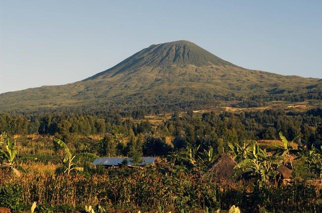 safari-in-rwanda-volcanoes-national-park_05